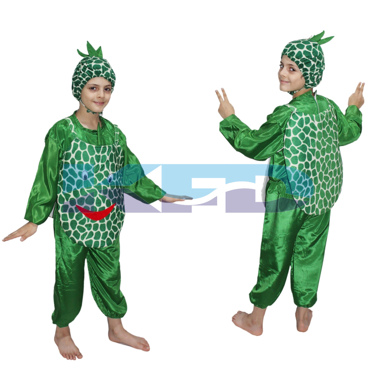 Pineapple fancy dress for kids,Fruits Costume for School Annual function/Theme Party/Competition/Stage Shows Dress