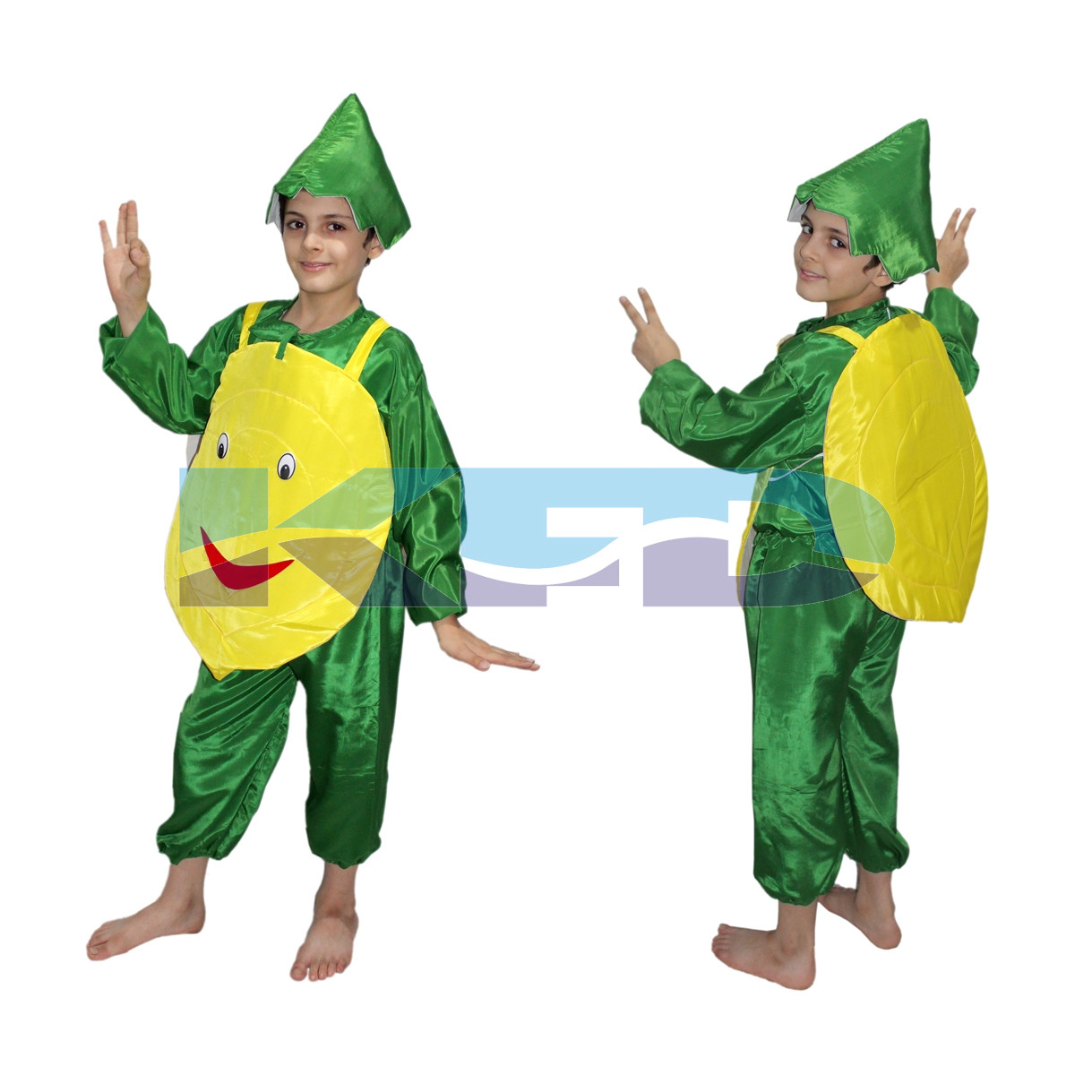 Lemon fancy dress for kids,Vegetable Costume for School Annual function/Theme Party/Competition/Stage Shows Dress
