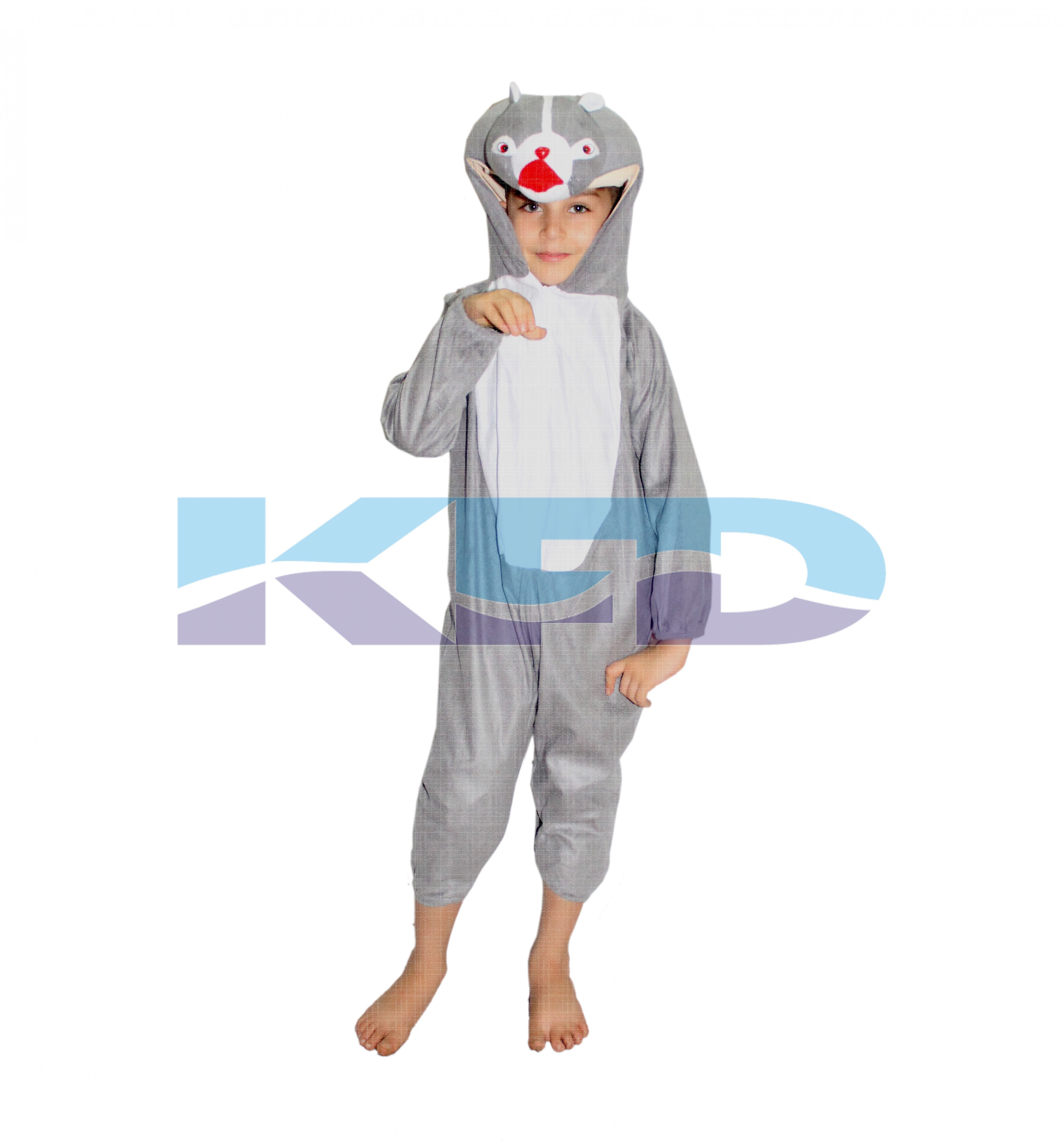 Squirrel fancy dress for kids,Animal Costume for School Annual function/Theme Party/Competition/Stage Shows Dress