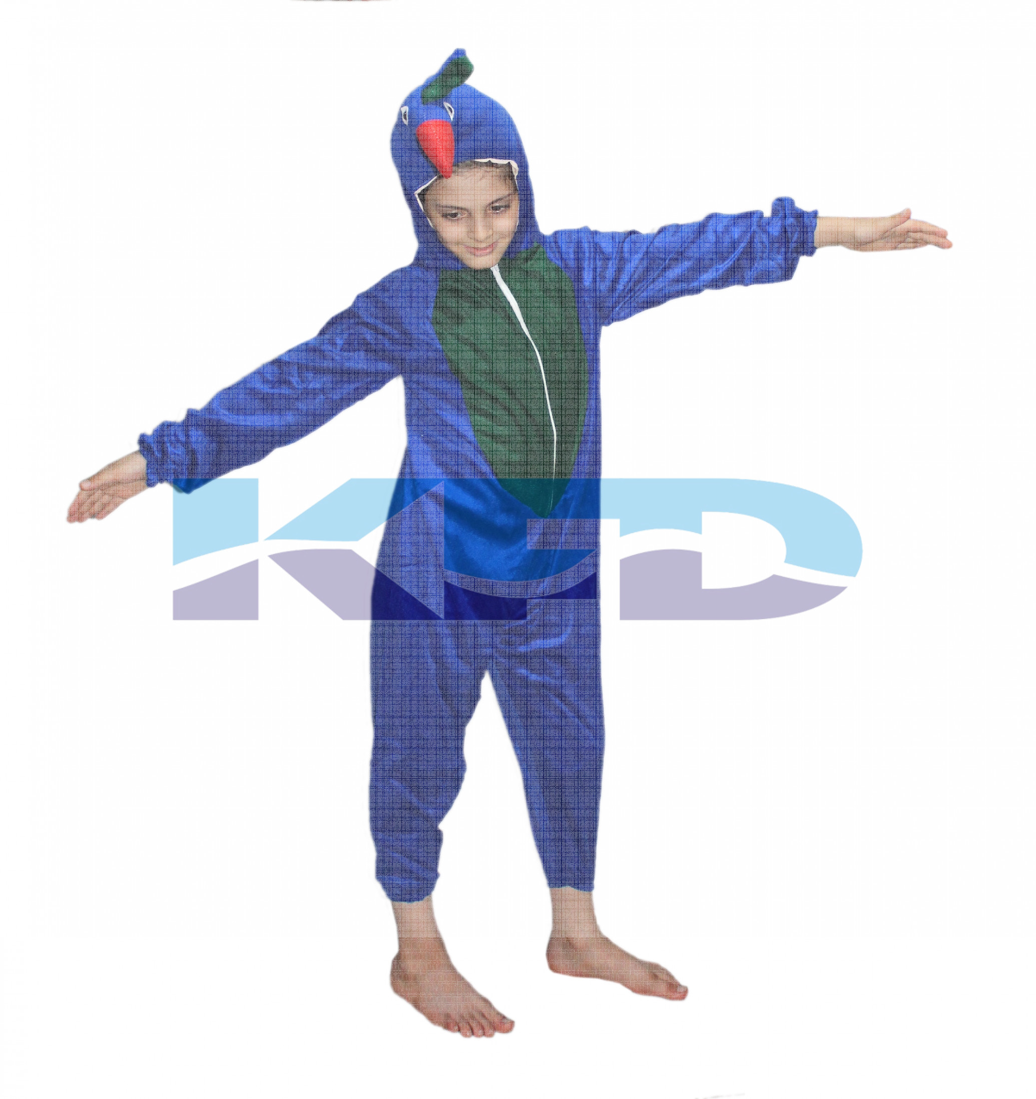 Peacock fancy dress for kids,National Bird Costume for School Annual function/Theme Party/Competition/Stage Shows Dress