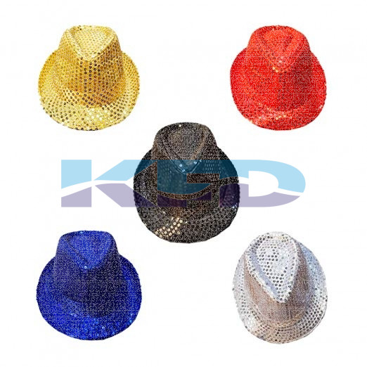 Party Hat Multi Color Annual function/Theme Party/Competition/Stage Shows/Birthday Party Dress