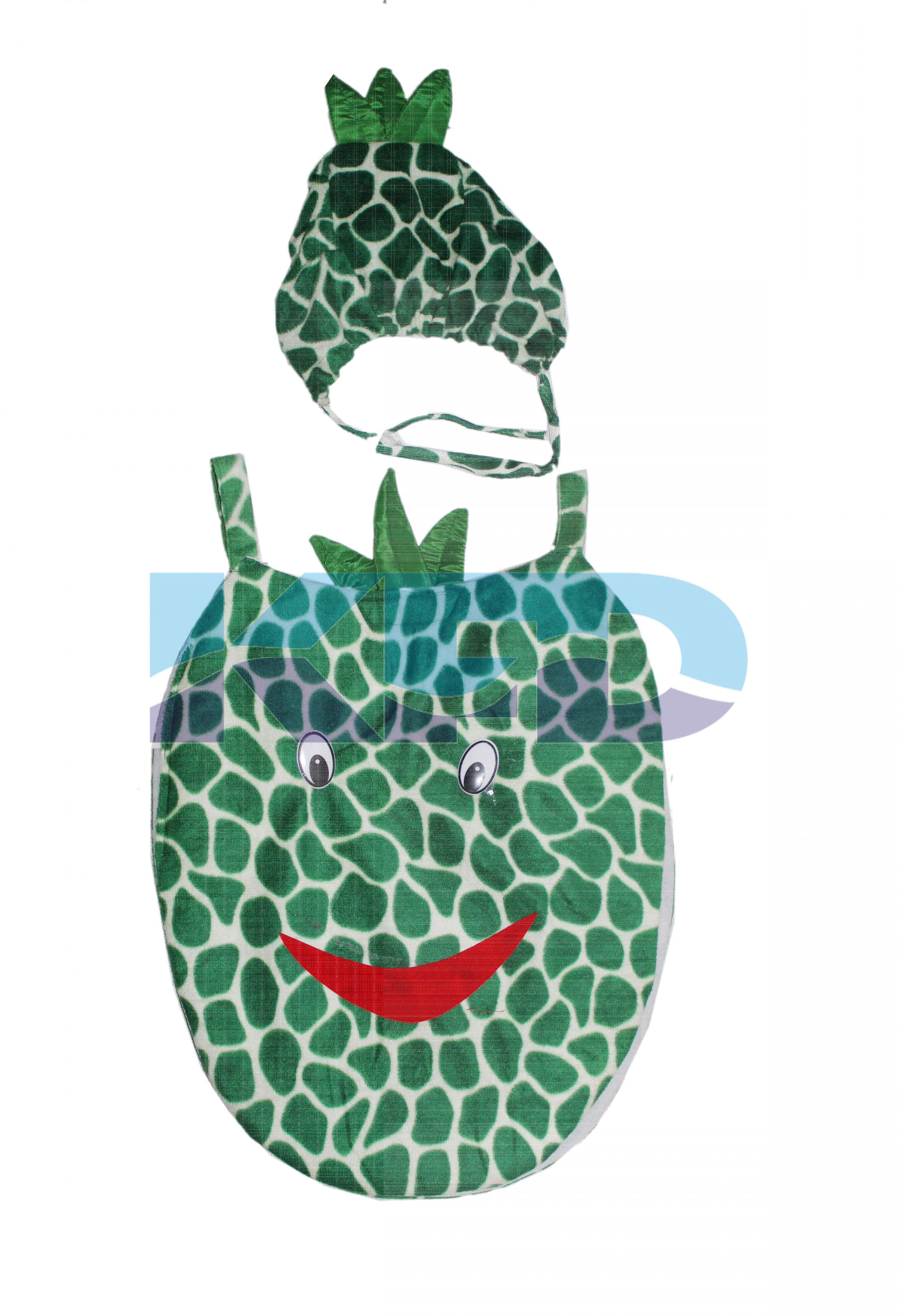 Pineapple Fruits Costume only cutout with Cap for Annual function/Theme Party/Competition/Stage Shows/Birthday Party Dress