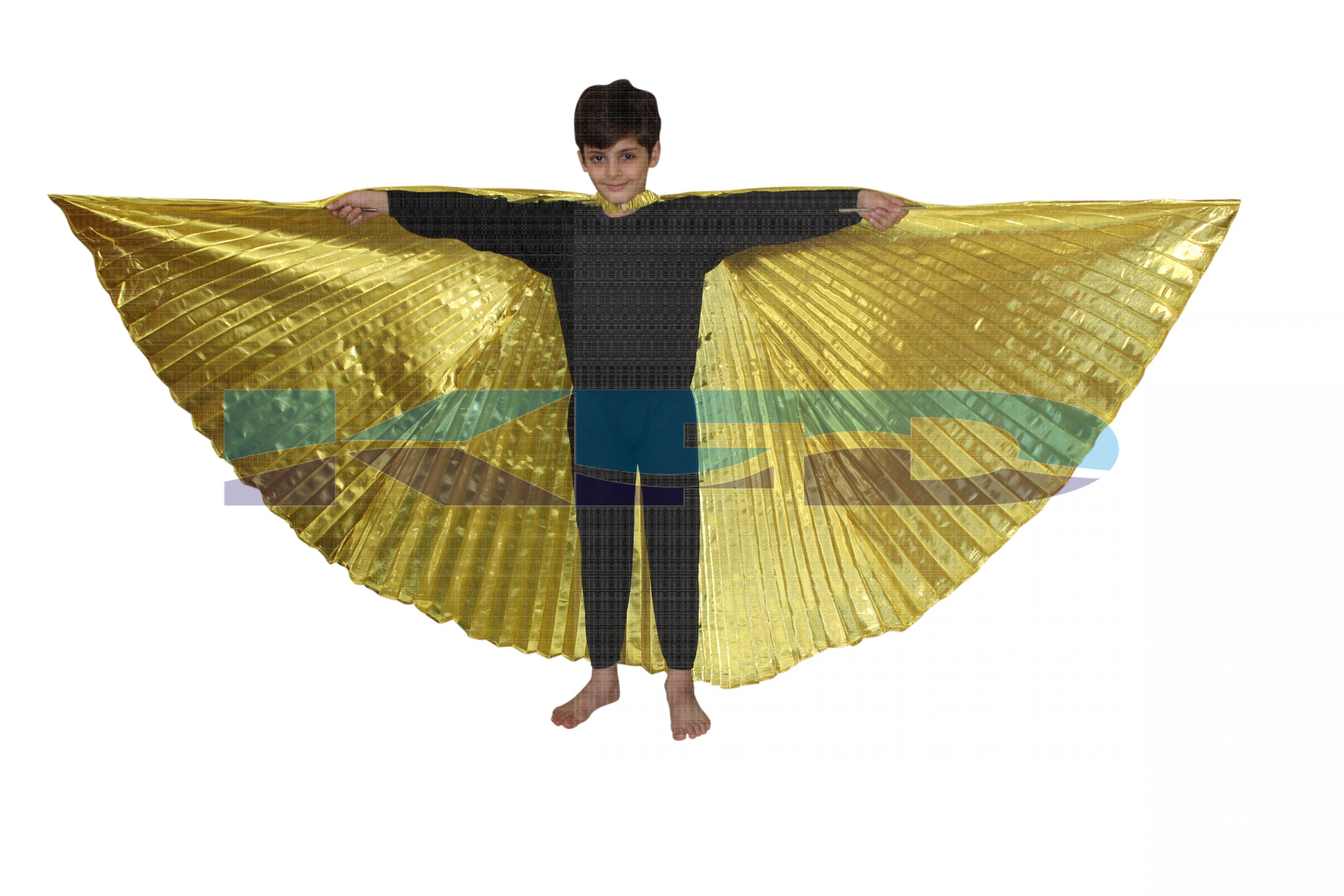 Belly Wings/Butterfly Wings/Cleopatra/Egyptian Dance Wings Full Size/CosPlay Costume For School Annual function/Theme Party/Competition/Stage Shows/Birthday Party Dress