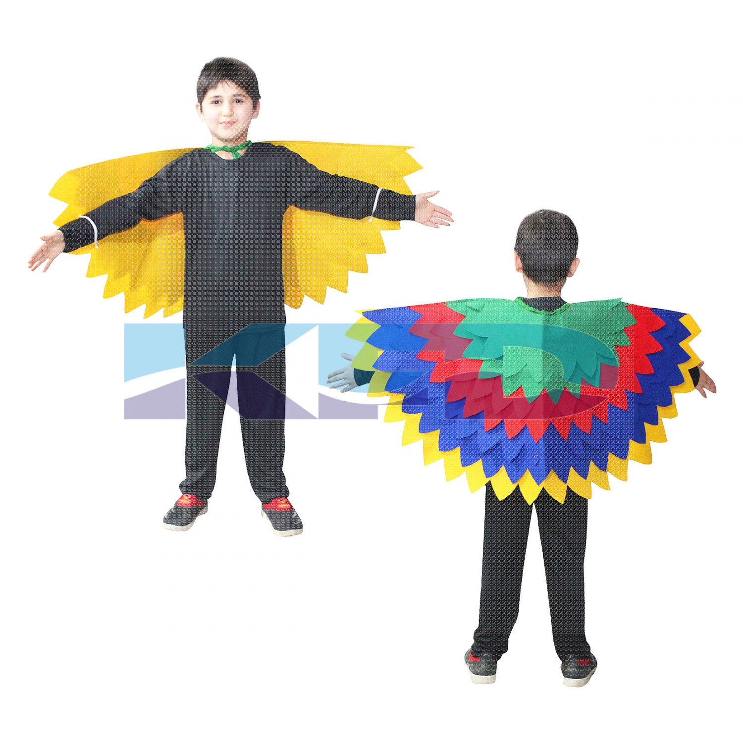 Bird Wings Fancy Dress