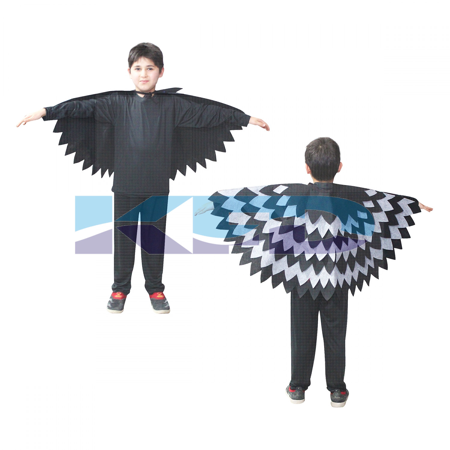 Crow Wings Fancy Dress
