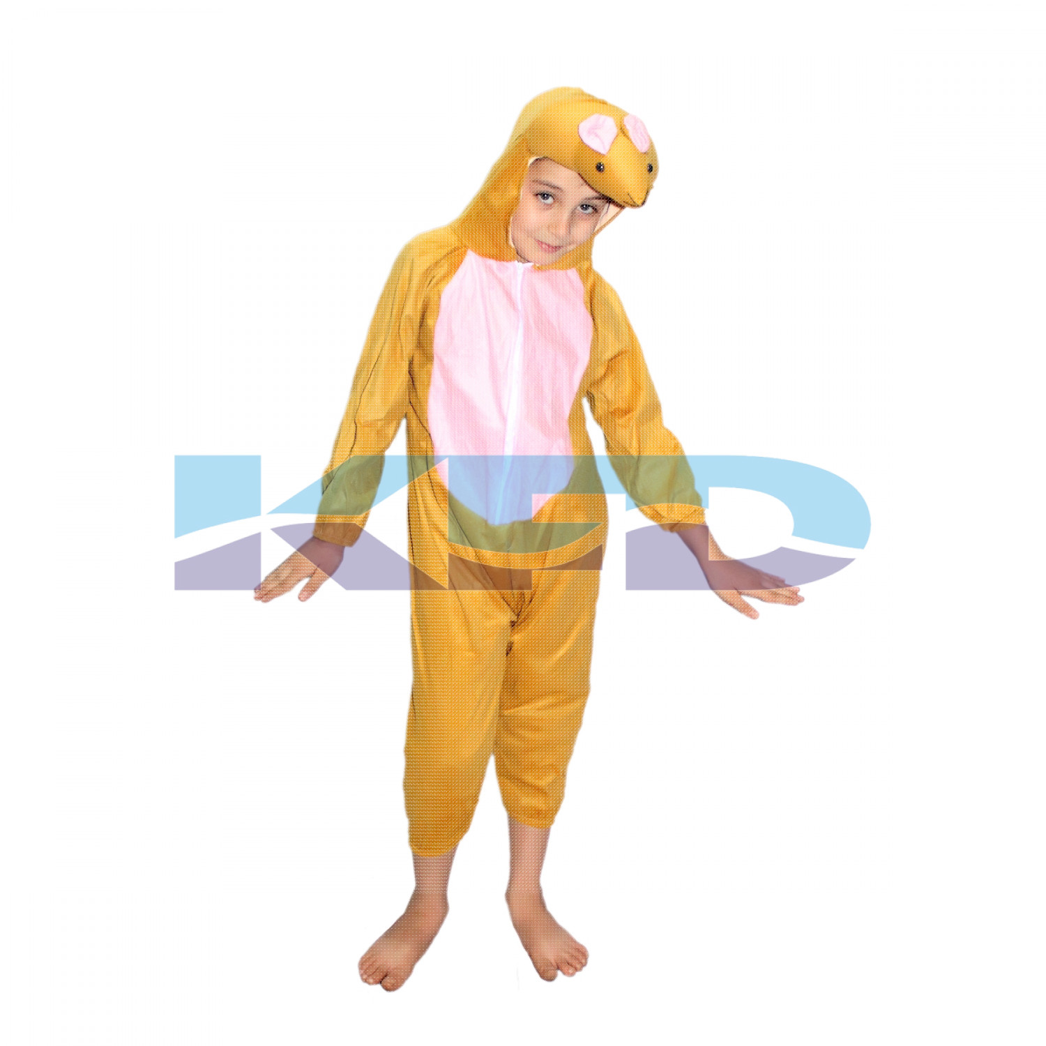 Rat fancy dress for kids,Animal Costume for School Annual function/Theme Party/Competition/Stage Shows Dress