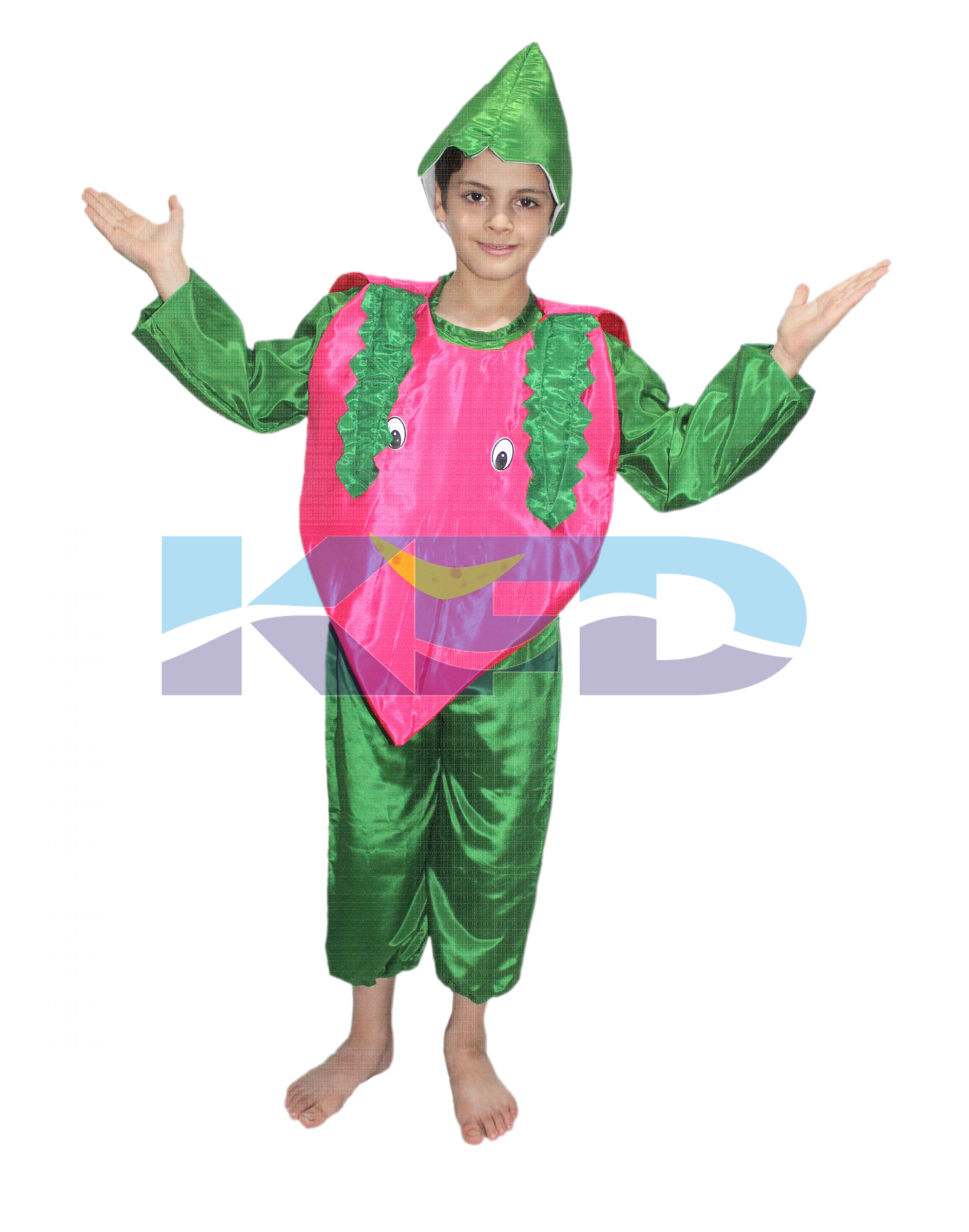 Onion fancy dress for kids,Vegetables Costume for School Annual function/Theme Party/Competition/Stage Shows Dress