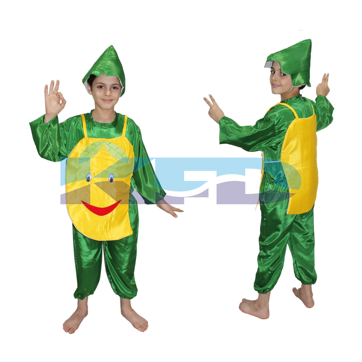 Mango fancy dress for kids,Fruits Costume for Annual function/Theme Party/Competition/Stage Shows Dress