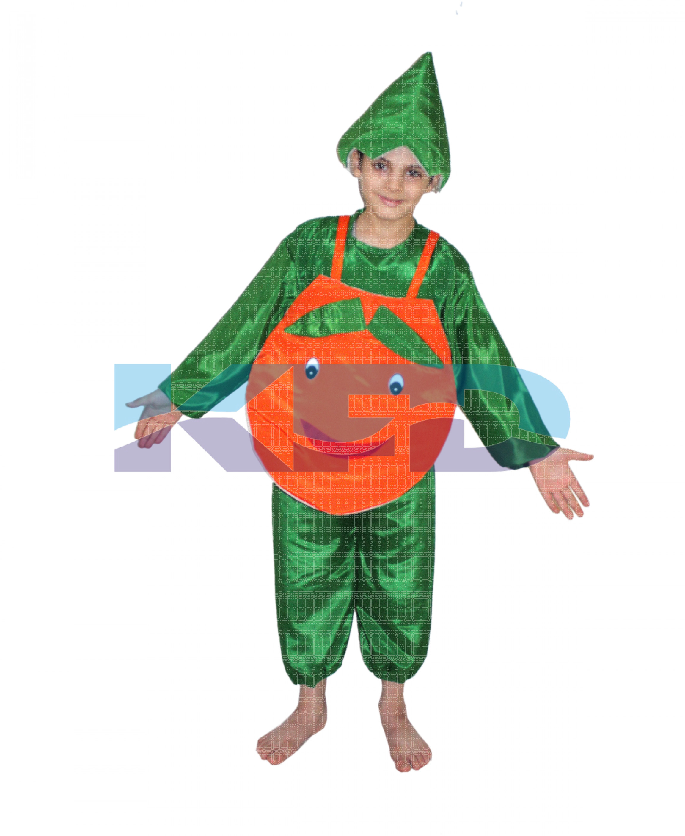 Orange fancy dress for kids,Fruits Costume for School Annual function/Theme Party/Competition/Stage Shows Dress