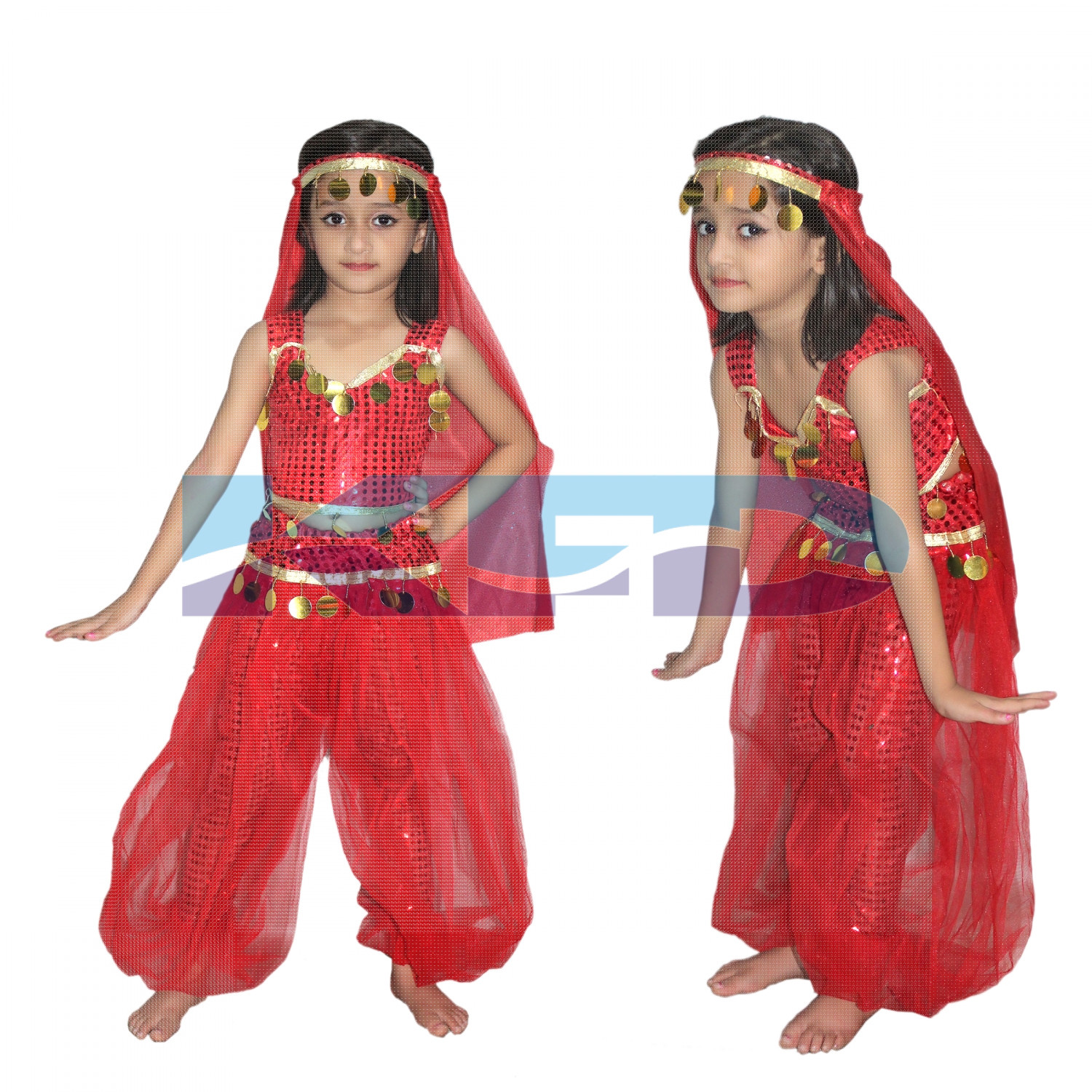 Arabian Girl Traditional Wear Global Costume For Kids School Annual function/Theme Party/Competition/Stage Shows Dress