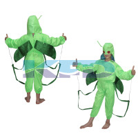 Grasshopper fancy dress for kids,Insect Costume for Annual function Theme Party/Stage Shows/competition/Birthday Party Dress