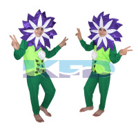 Purple Flower Costume,Rose Costume,Nature Costume For School Annual function/Theme Party/Competition/Stage Shows/Birthday Party Dress