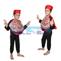 Pizza fancy dress for kids,Object Costume for School Annual function/Theme Party/Competition/Stage Shows Dress