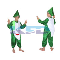 Radish fancy dress for kids,Vegetables Costume for School Annual function/Theme Party/Competition/Stage Shows Dress