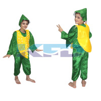 Corn fancy dress for kids,Vegetables Costume for School Annual function/Theme Party/Competition/Stage Shows Dress
