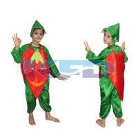 RedChilly fancy dress for kids,Vegetables Costume for School Annual function/Theme Party/Competition/Stage Shows Dress
