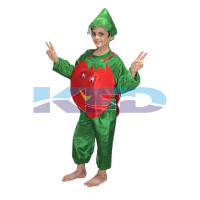Tomato fancy dress for kids,Vegetables Costume for School Annual function/Theme Party/Competition/Stage Shows Dress