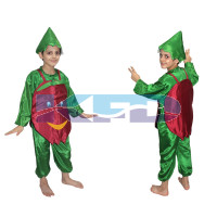 Pomegranate fancy dress for kids,Fruits Costume for School Annual function/Theme Party/Competition/Stage Shows Dress