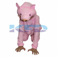 Pink Pig fancy dress for kids,Farm Animal Costume for School Annual function/Theme Party/Competition/Stage Shows Dress