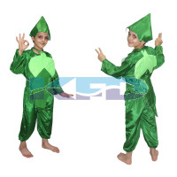 Lady finger fancy dress for kids,Vegetables Costume for School Annual function/Theme Party/Competition/Stage Shows Dress