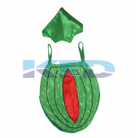 Watermelon Fruits Costume only cutout with Cap for Annual function/Theme Party/Competition/Stage Shows/Birthday Party Dress