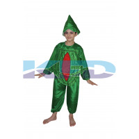 Watermelon fancy dress for kids,Fruits Costume for School Annual function/Theme Party/Competition/Stage Shows Dress