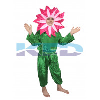 Mazanta flower Costume,Nature Costume for Annual function/Theme Party/Stage Shows/Competition/Birthday Party Dress