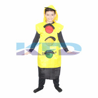 Traffic Lights Costume for Cosplay/Traffic Signal Costume/For Kids Annual function/Theme Party/Competition/Stage Shows/Birthday Party Dress