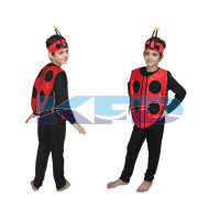 Lady Bird fancy dress for kids,Insect costume for School Annual Function/Theme Party/Competition/Stage Shows Dress