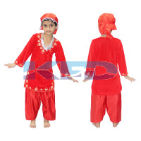 Kashmiri Girl fancy dress for kids,Indian State Traditional Wear Costume for Annual function/Theme party/Competition/Stage Shows/Birthday Party Dress