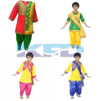 Punjabi Girl fancy dress for kids,Indian State Traditional Wear Costume for Annual function/Theme party/Competition/Stage Shows/Birthday Party Dress